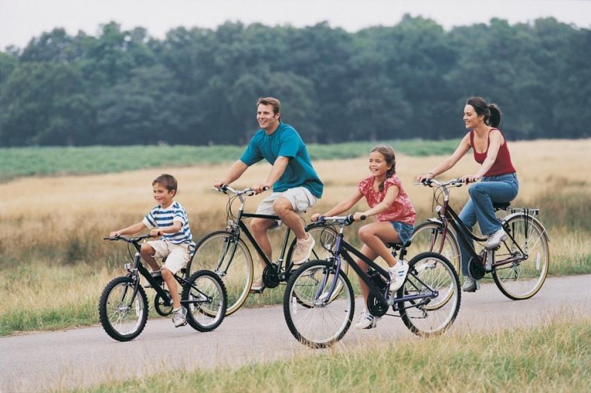 Unapređenje turizma: Turistička organizacija nabavila bicikle za ...